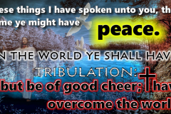 peaceintribulation