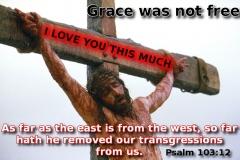 grace (2)