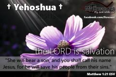 yehoshua-1